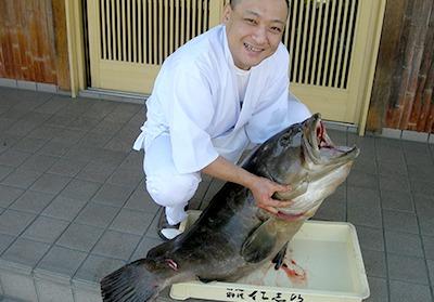 幻の魚くえの画像